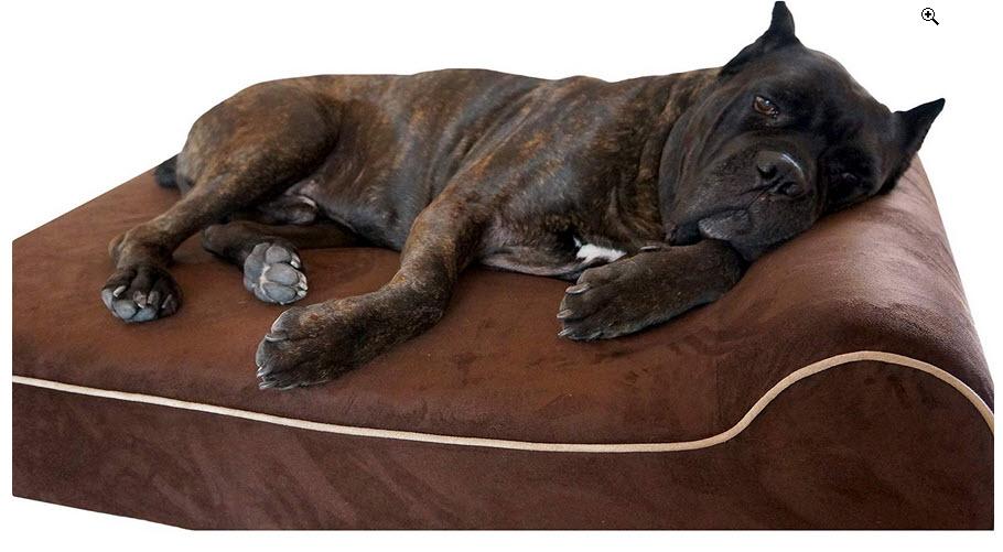 orthopedic memory foam dog bed