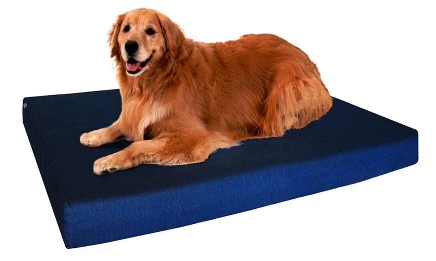 orthopedic dog beds for all breeds