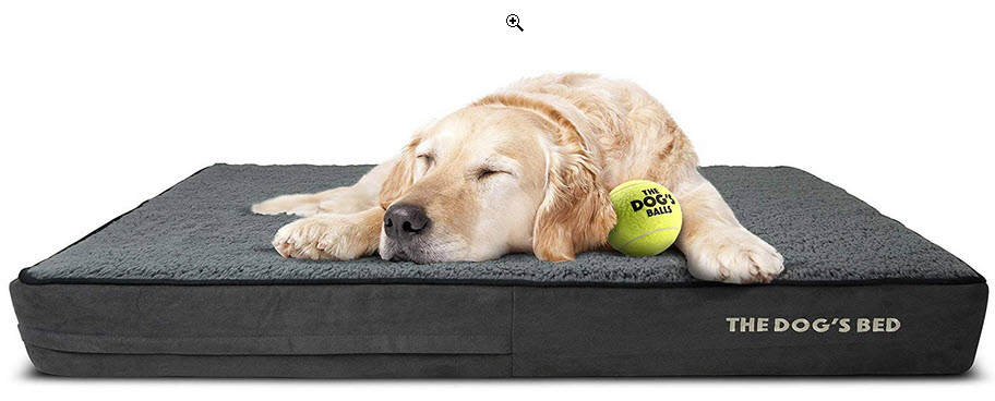dog bed from the dogs balls