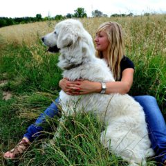 big white dog and owner